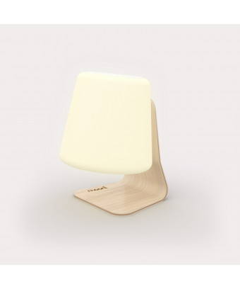 Mooni Table Lamp Speaker